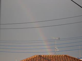 090601-rainbow.jpg